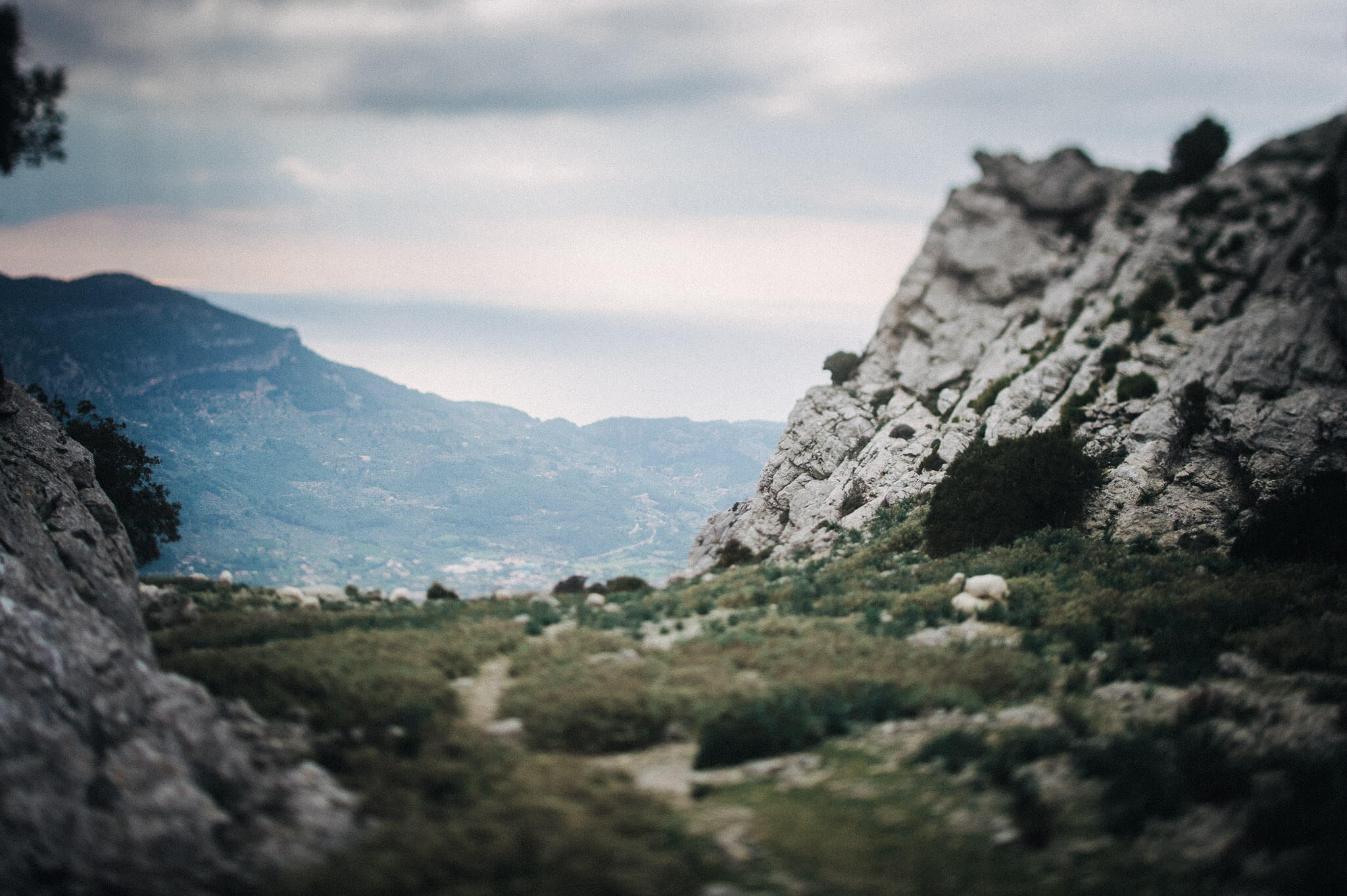 Paarshooting Mallorca