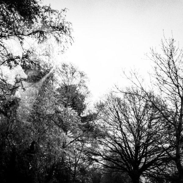 torben-roehricht-hochzeit-fotograf-buchholz-01