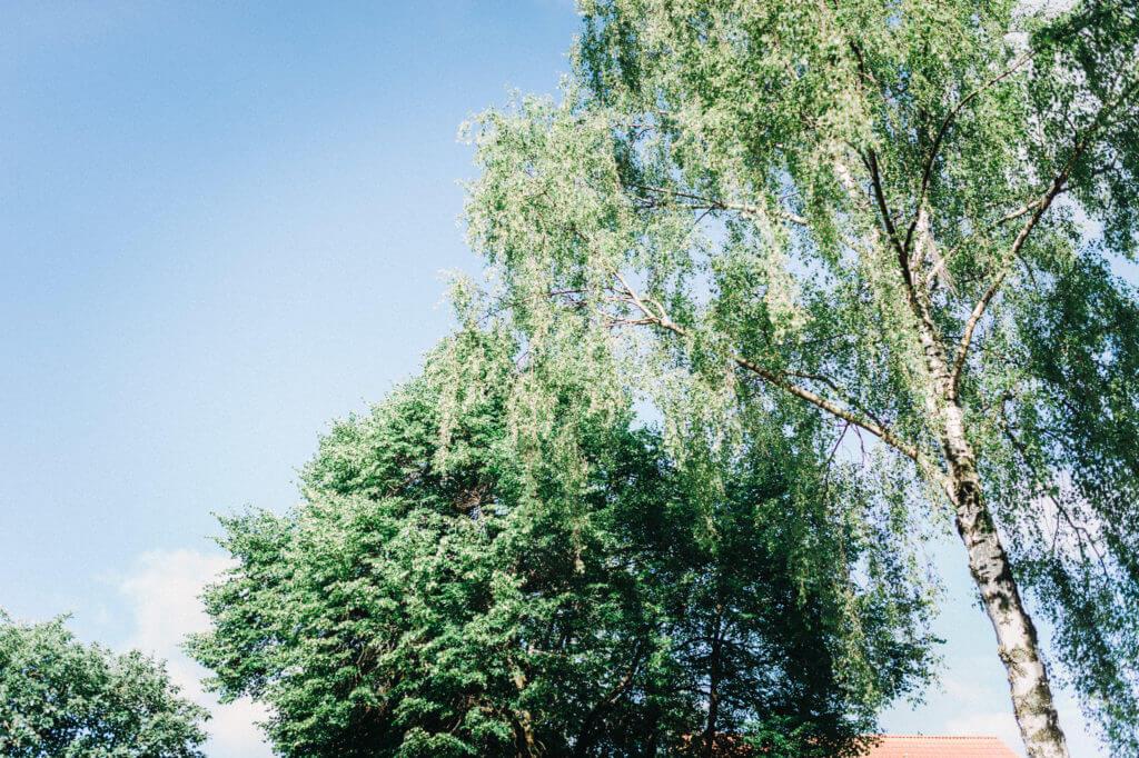 torben-roehricht-hochzeit-fotograf-altes-land-001