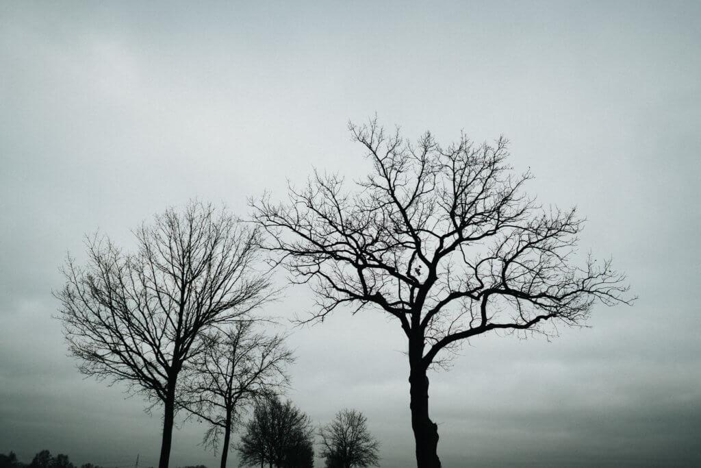 Torben-roehricht-fotograf-hochzeit-winter-27